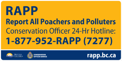 report all poachers and polluters in bc