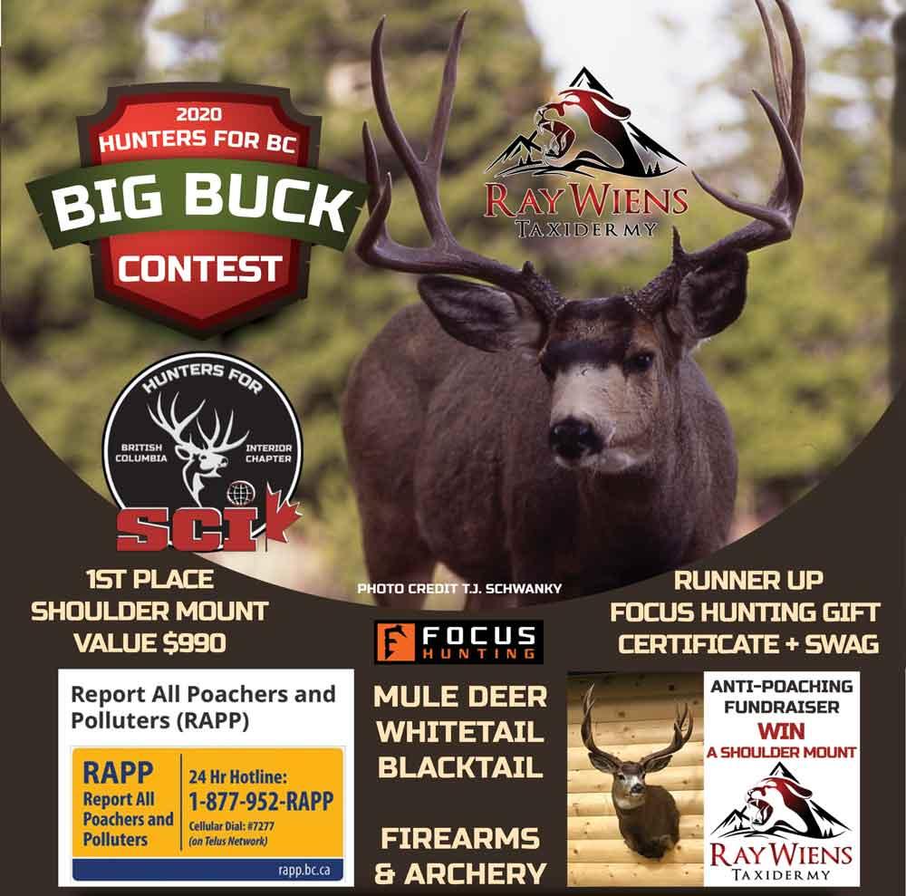 big-buck-contest POSTER